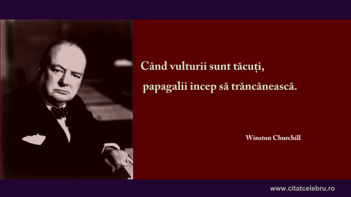 winston churchill vulturi