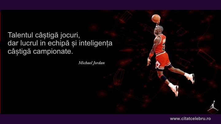 michael jordan despre echipa