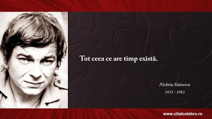 Nichita Stanescu - despre realitate
