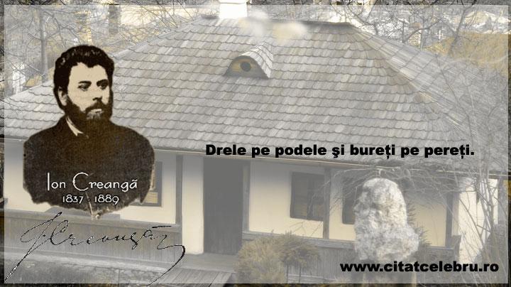 Ion-Creanga9