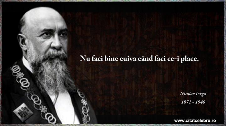 Nicolae Iorga - despre binete