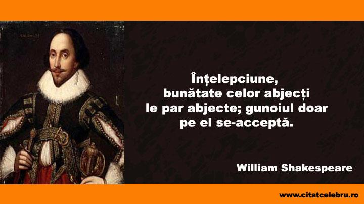 citate despre intelepciune Citat Celebru » intelepciune citate despre intelepciune
